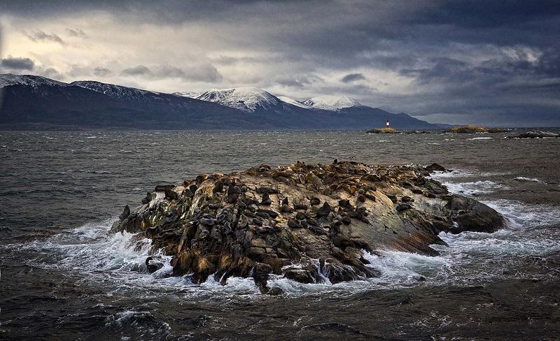 La mirada más austral un viaje fotográfico a la Patagonia más desconocida